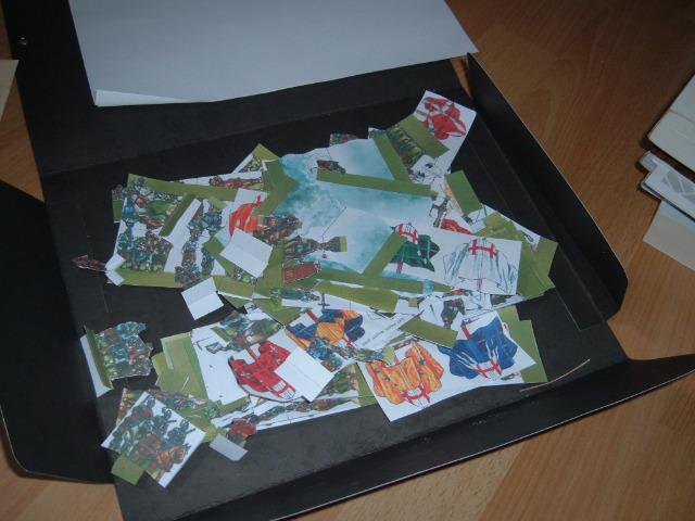 Tigres de papier 0576je