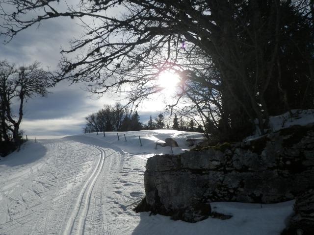 piste de ski de fond entre le haut de la station de ski d'Autrans (Télésiège de la Quoi et La Molière (Engins)